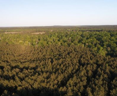 Aerial of Blue Hills in Burkeville, TX