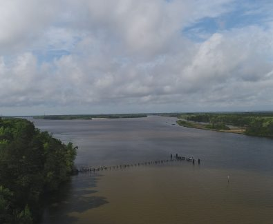 Looking South Down Tensaw at Ghost Fleet Tract in Baldwin County, AL