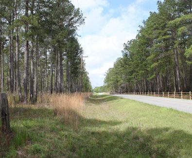 Country Road 86 Frontage at Ghost Fleet Tract in Baldwin County, AL