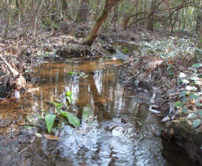 Creek Bottom at Gulfcrest Tract in Gulfcrest, AL