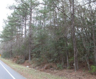 Road Frontage at Gulfcrest Tract in Gulfcrest, AL