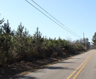 Zeigler Road Frontage at Holt 6D Adkin Hill in Deatsville, AL